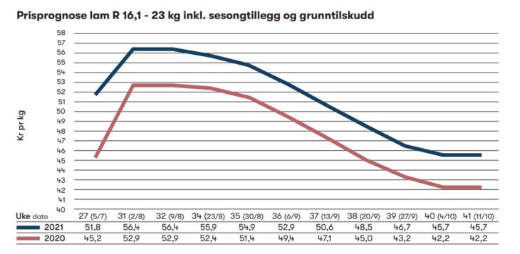 Prisprognose lam graf